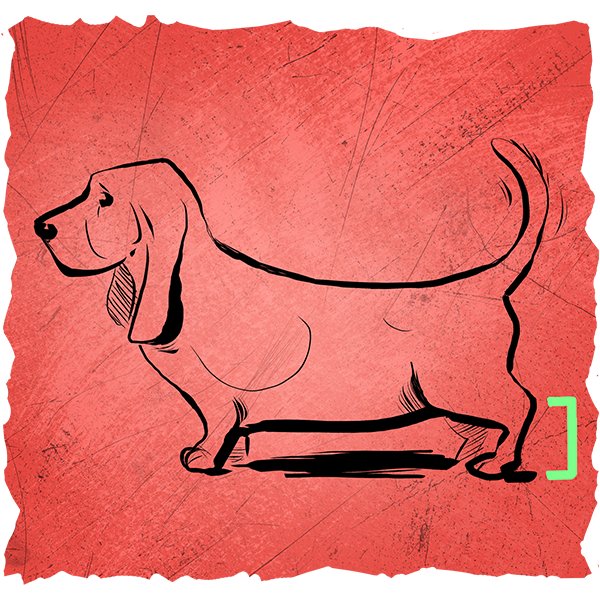 Some breeds of dogs have evolved or have been genetically engineered to be smaller, thus creating dogs with smaller and often unpractical legs.