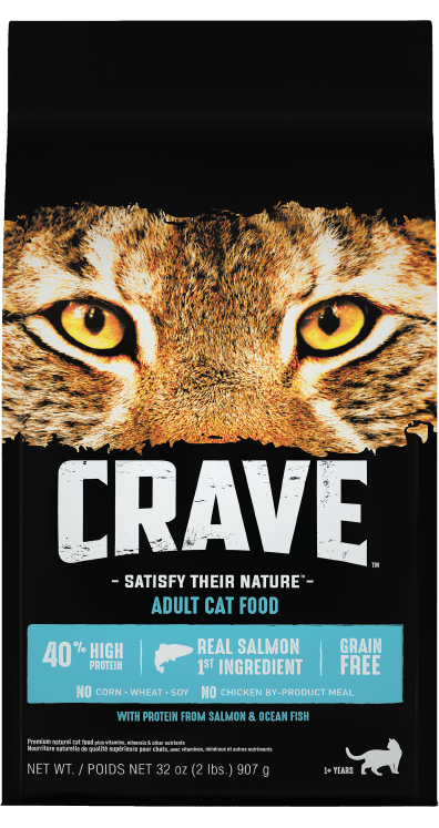 crave dry cat food salmon