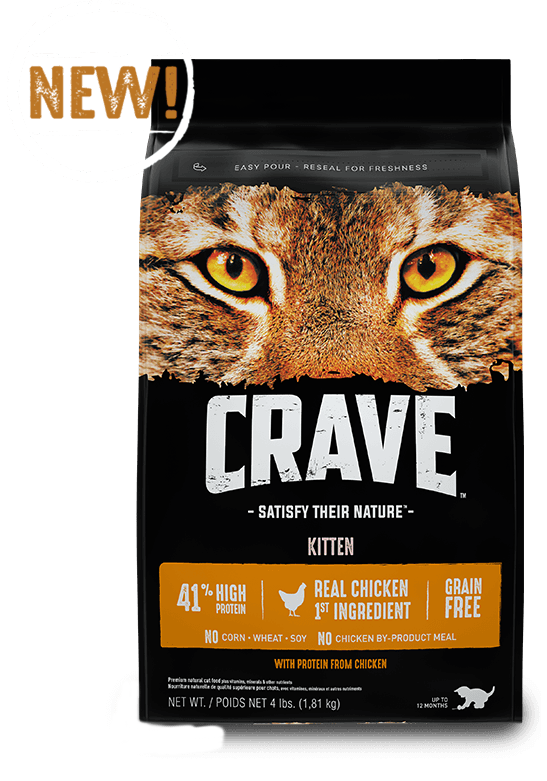 Crave Dog Food Dry